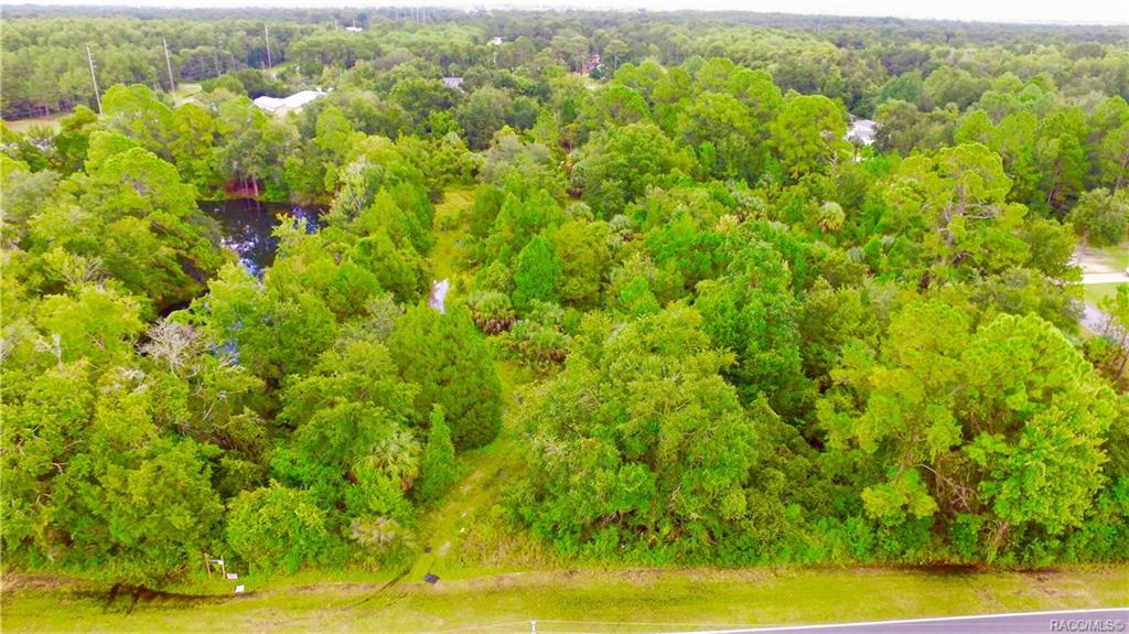 listing 4125 s grandmarch avenue homosassa fl mls 776346