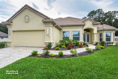 Hernando FL Single Family Home For Sale: $519,000