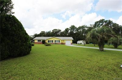 Homosassa Single Family Home For Sale: 4148 S Alabama Avenue