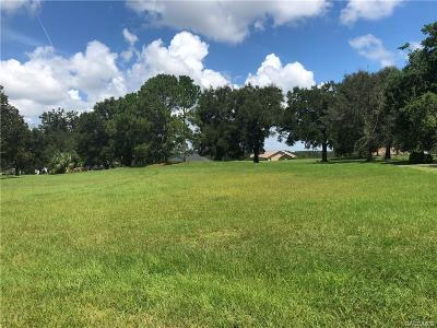Hernando Residential Lots & Land For Sale: 755 E Dakota Street