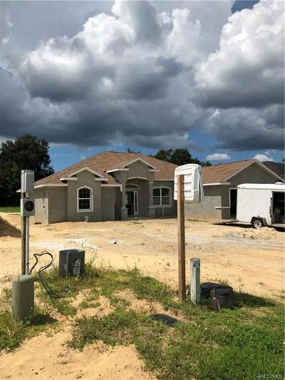 Hernando Single Family Home For Sale: 422 W Cobblestone Loop #48