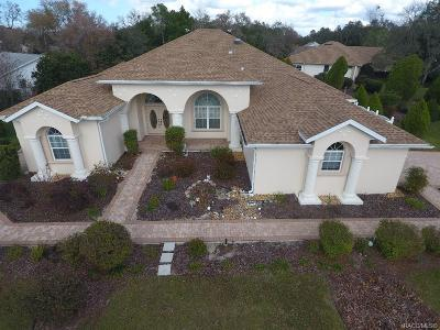 Homosassa Single Family Home For Sale: 1 Begonias Court