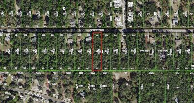 Hernando Residential Lots & Land For Sale: 1248 E Bismark Street