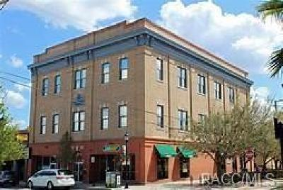Inverness Commercial For Sale: 111 W Main Street