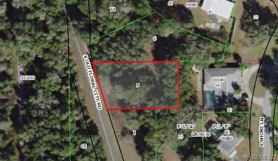 Floral City Residential Lots & Land For Sale: 5245 S Old Floral City Road