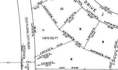 Floral City Residential Lots & Land For Sale: 5201 S Old Floral City Road