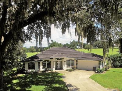 Citrus County Single Family Home For Sale: 849 N Sabal Palm Way