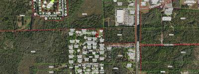 Crystal River Residential Lots & Land For Sale: 15 S Camellia Avenue
