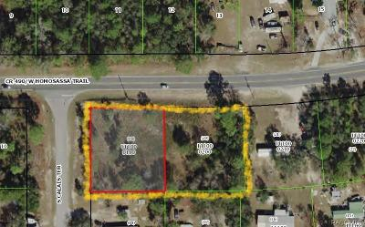 Homosassa Residential Lots & Land For Sale: 3025 S Calais Terrace