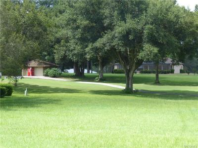 Hernando Residential Lots & Land For Sale: 493 E Dakota Court