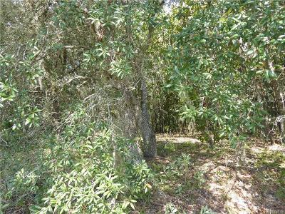 Citrus County Residential Lots & Land For Sale: 1575 E Monopoly Loop