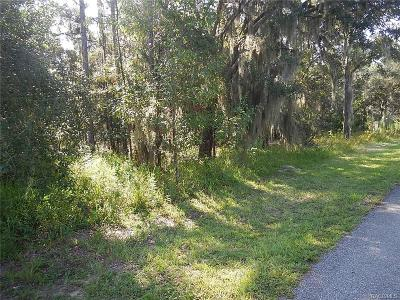 Lecanto Residential Lots & Land For Sale: 461 N Seton Avenue
