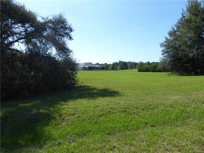 Hernando Residential Lots & Land For Sale: 3142 N Bates Point