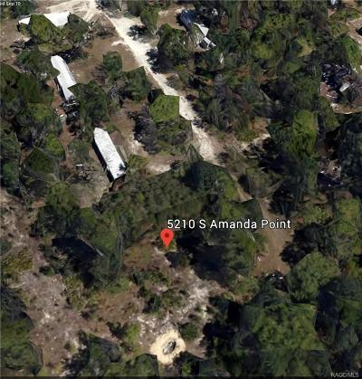 Citrus County Residential Lots & Land For Sale: 5210 S Amanda Point
