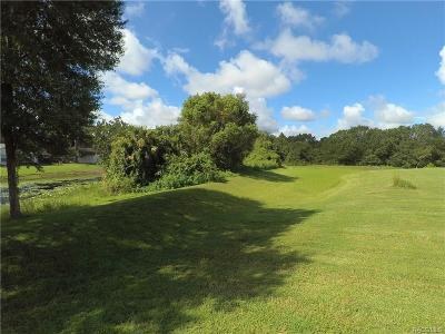 Citrus County Residential Lots & Land For Sale: 9705 E White Egret Path