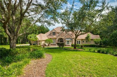 Hernando Single Family Home For Sale: 2285 N Overlook Path