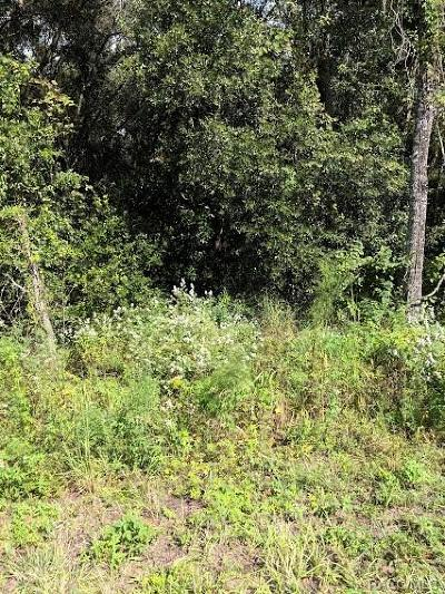 Citrus County Residential Lots & Land For Sale: 271 N Croft Avenue
