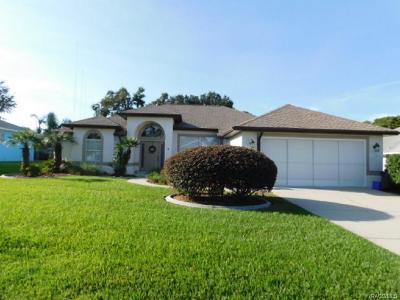 Hernando Single Family Home For Sale: 3654 E Cove Park Trail