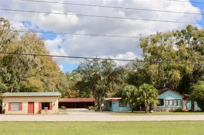 Lecanto Commercial For Sale: 3729 S Lecanto Highway