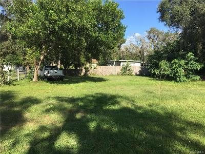 Floral City Residential Lots & Land For Sale: 10634 E Turtle Lane