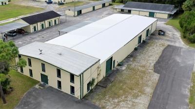 Homosassa, Dunnellon Commercial For Sale: 1760 S Dimensions Terrace