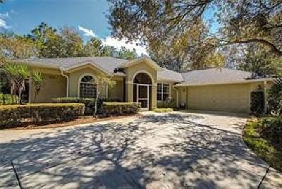 Sugarmill Woods Single Family Home For Sale: 126 Corkwood Boulevard
