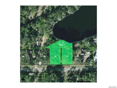 Dunnellon Residential Lots & Land For Sale: 723 & 741 W Lightwood Street