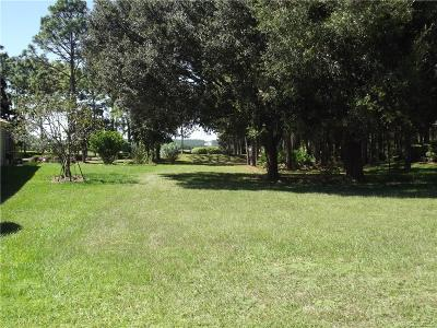 Hernando Residential Lots & Land For Sale: 1995 N Gibson Point