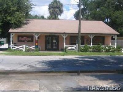 Homosassa, Dunnellon Commercial For Sale: 20583 W Pennsylvania Avenue