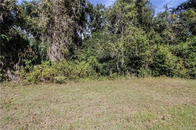 Hernando Residential Lots & Land For Sale: 488 W Cobblestone Loop