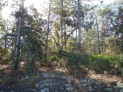 Residential Lots & Land For Sale: 6374 W Rio Grande Drive
