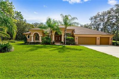 Homosassa Single Family Home For Sale: 96 Woodfield Circle