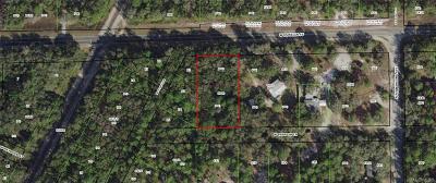 Dunnellon Residential Lots & Land For Sale: W Parish Lane