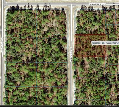 Residential Lots & Land For Sale: 4036 W Malaluka Circle