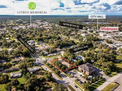 Inverness Commercial For Sale: 102 E Highland Boulevard