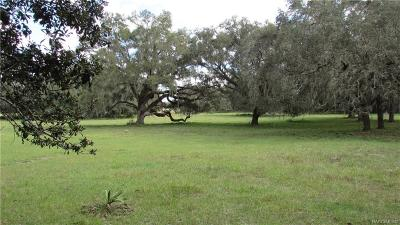 Floral City Residential Lots & Land For Sale: 10254 E Trails End Road
