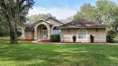 Hernando FL Single Family Home For Sale: $299,000