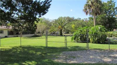 Homosassa Residential Lots & Land For Sale: 4214 S Eve Point