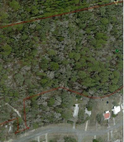 Lecanto Residential Lots & Land For Sale: 5437 W Cinnamon Ridge Drive