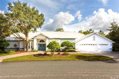 Homosassa, Dunnellon Single Family Home For Sale: 16 Drypetes Court E