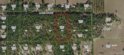 Floral City Residential Lots & Land For Sale: 7248 E Shady Nook Court