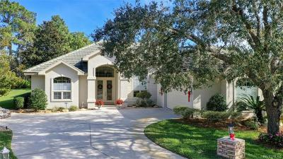 Citrus County Single Family Home For Sale: 3861 N Baltusrol Path