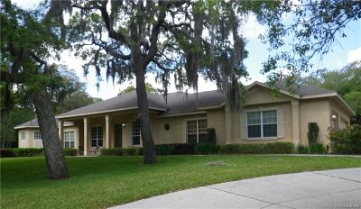 Citrus County Single Family Home For Sale: 1248 N Essex Avenue