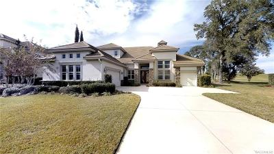 Hernando Single Family Home For Sale: 1763 N Sky Glen Path