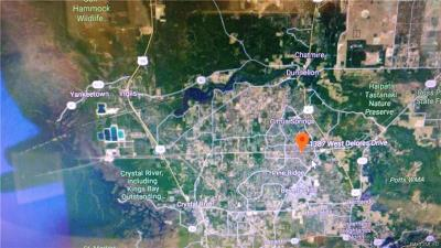 Citrus Springs Residential Lots & Land For Sale: 1387 W Delores Drive