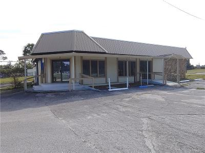 Citrus County Commercial For Sale: 1754 Highway 41 Highway N