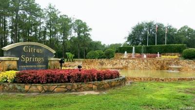 Citrus Springs Residential Lots & Land For Sale: 8892 N Bee Way
