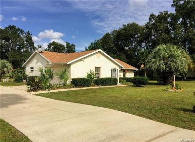 Hernando Single Family Home For Sale: 253 E Falconry Court