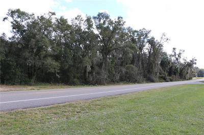 Floral City Residential Lots & Land For Sale: 6245 S Florida Avenue