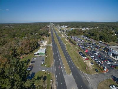 Homosassa Commercial For Sale: 2420 S Suncoast Boulevard